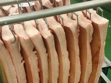carne_cerdo_17